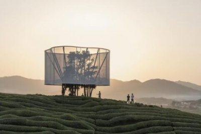 """2021–地方·发现""""艺术节:马岩松呈现装置作品《大地之灯》"""